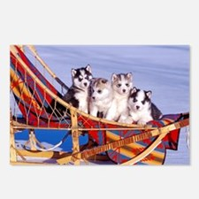 Cute Domestic animals Postcards (Package of 8)