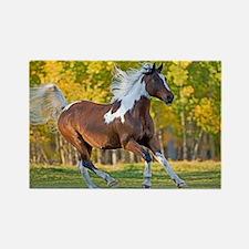 Cute Wild horses running Rectangle Magnet