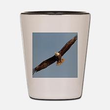 Unique Eagle Shot Glass
