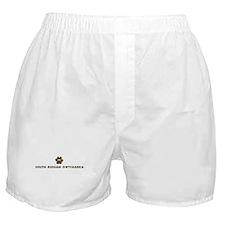 South Russian Owtcharka (dog  Boxer Shorts