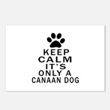 Canaan Dog Keep Calm Desi Postcards (Package of 8)