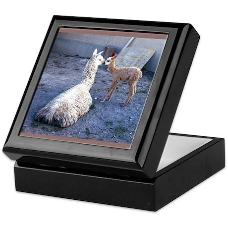 mom and baby llama Keepsake Box