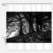 Growing roots Shower Curtain