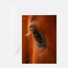 Cute Horse eye Greeting Card