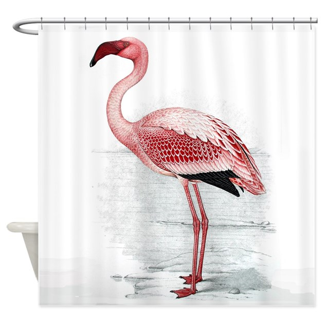 Flamingo Shower Curtain By Flamingo Mania