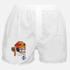 Cute Santa fe Boxer Shorts