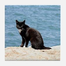 BEACH CAT Tile Coaster