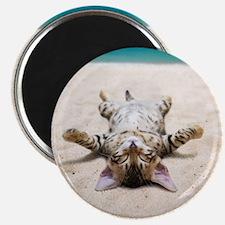 BEACH CAT Magnets