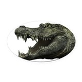 Alligator Oval Car Magnets
