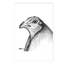 Gamecock Head Detail Postcards (Package of 8)