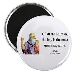 Plato 15 Magnet