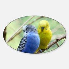 Budgie Love Decal