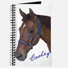Cooley Journal