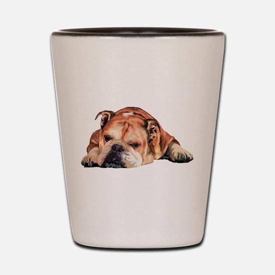 English Bulldog Art Portrait Shot Glass