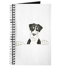 NMtl Lookover Journal