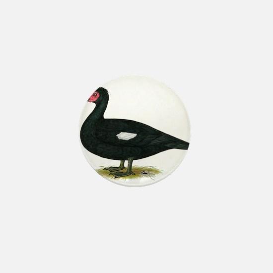 Muscovy Black Drake Mini Button