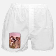 Cute American paint horse Boxer Shorts
