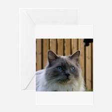 ragdoll Greeting Cards
