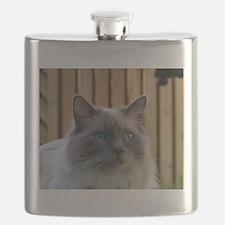 ragdoll Flask