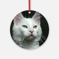 turkish angora two colored eyes white Round Orname