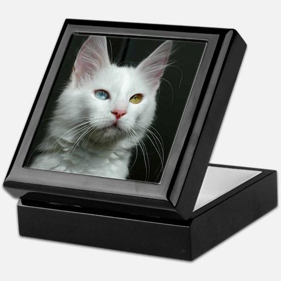 turkish angora two colored eyes white Keepsake Box