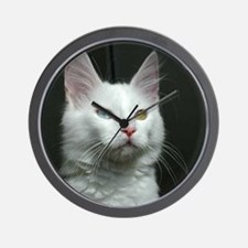 turkish angora two colored eyes white Wall Clock