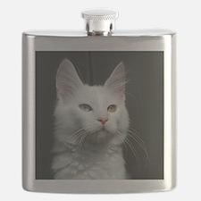 turkish angora two colored eyes white Flask