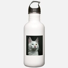 turkish angora two colored eyes white Water Bottle