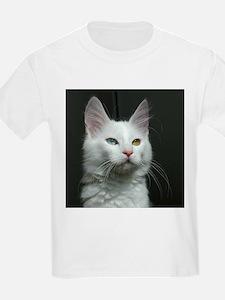 turkish angora two colored eyes white T-Shirt