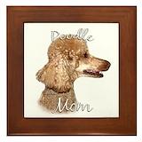 Apricot standard poodle lover Framed Tiles