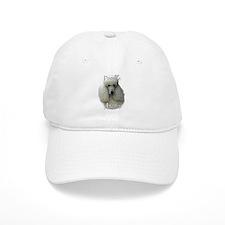 Poodle Mom2 Baseball Cap