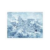 Snowflake 5x7 Rugs