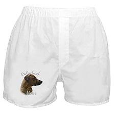 Ridgeback Mom2 Boxer Shorts