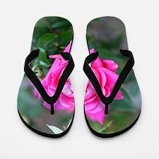 Funny Beautiful roses Flip Flops