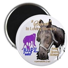 Cute Abused horse Magnet