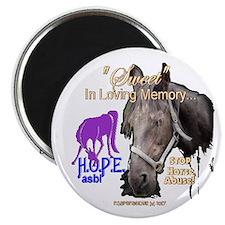Unique Abused horse Magnet