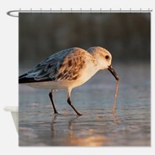 Funny Feed birds Shower Curtain