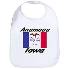 Anamosa Iowa Bib