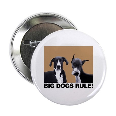 """BIG DOGS RULE! 2.25"""" Button (100 pack)"""