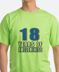 18 Years Of Awesomeness T-Shirt