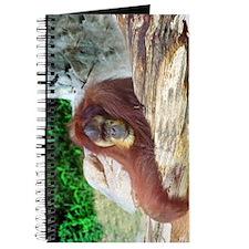 Orangutan Over Log Journal