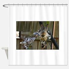 Giraffe Baby Mama Kiss Shower Curtain