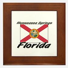 Homosassa Springs Florida Framed Tile