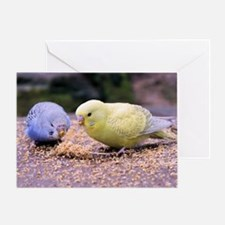 Cute Bird cage Greeting Card