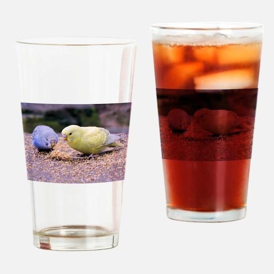 Budgie Drinking Glass