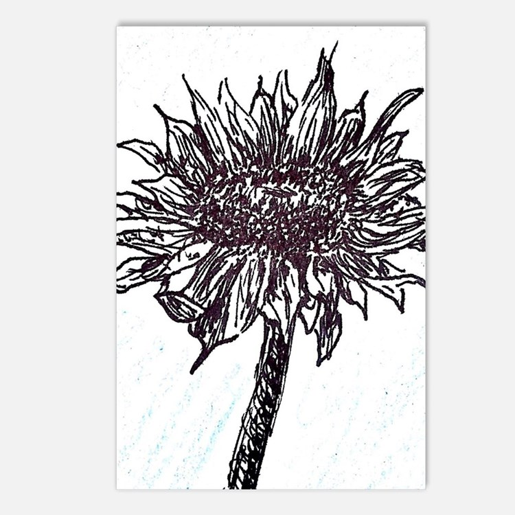 Cute Black and white sunflowers Postcards (Package of 8)