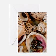 Seashells Card Greeting Cards