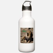 Resting lion Water Bottle