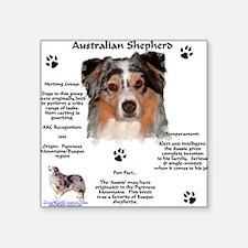 "Cute Australian shepherd dog lover Square Sticker 3"" x 3"""