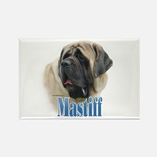 Mastiff(fawn)Name Rectangle Magnet